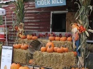 Fall Pumpkins on Hay Bales at Local Cider Mill