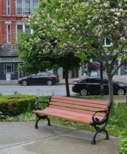 Park Bench in Historic Johnstown NY
