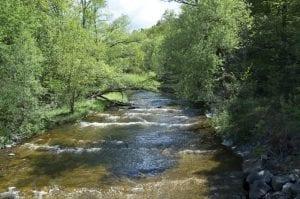 cayadutta creek