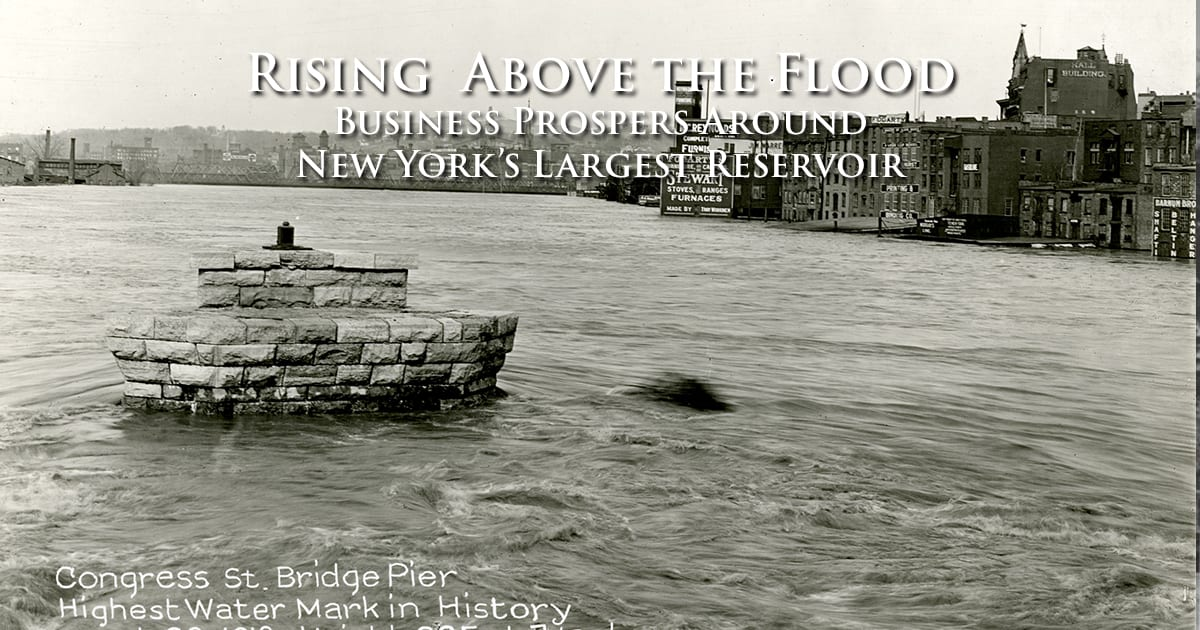 Rising  Above the Flood