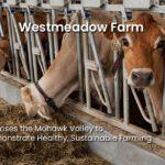 Westmeadow Farm